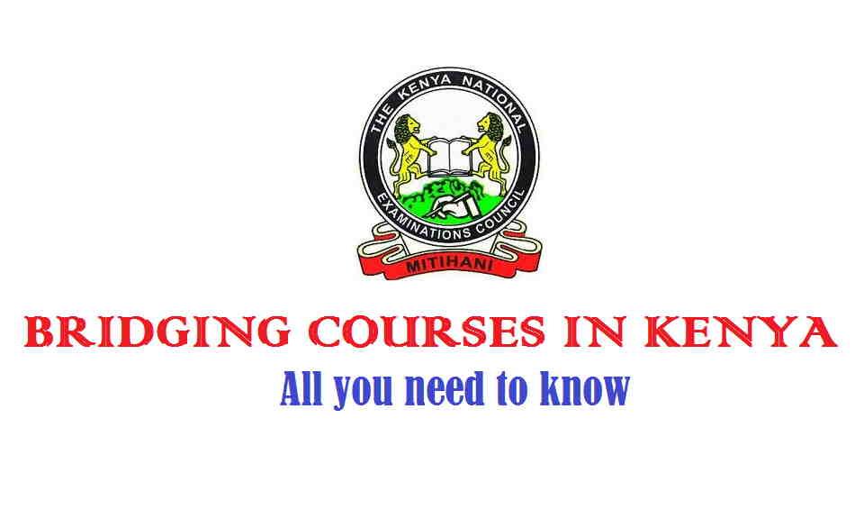 KNEC bridging courses