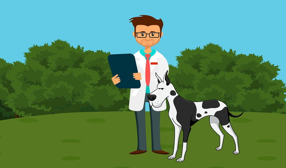 Is veterinary medicine marketable in Kenya