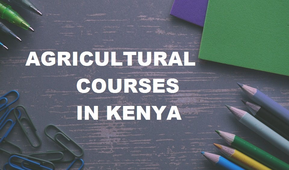 Marketable Agricultural Courses in Kenya
